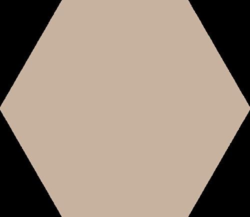 Hex25 Basic Nude 25x22 CV2202 € 54,95 m²