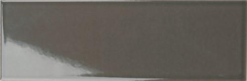 Silk Grafite 10x30 - 434 TS3034 € 74,95 m²
