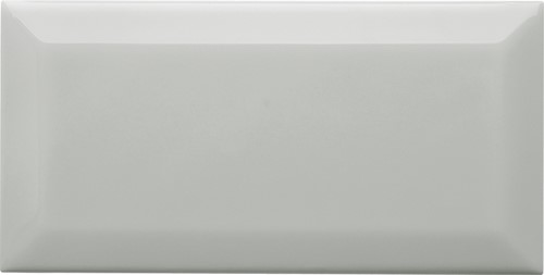 Biselado 10x20 Silver Mist SN1621 €79,95 m²