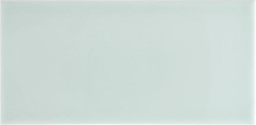 Studio Liso 9,8x19,8 Fern ST3909 € 89,95 m²