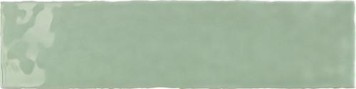 Crayon Salvia 7,5x30 TC3017 € 64,95 m²