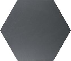 Hex25 Basic Black 25x22 CV2210 € 54,95 m²