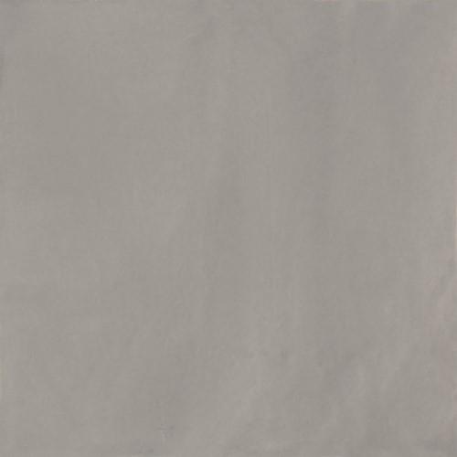 Delight Grey 13,8x13,8 AX1307 € 74,95 m²
