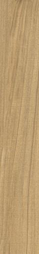 Gamma-R Miel 14,4x89,3 VG1403 € 54,95 m²