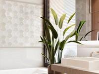 Pentax Concave Snow 11,2x15 HP1201 € 119,95 m²-3