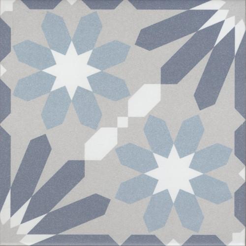 La Madeleine Syrah Bleu 20x20 RP2055 € 59,95 m²