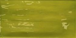Joyful Lime 10x20 TJ2013 € 79,95 m²