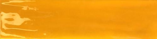 Joyful Mango 10x40 TJ4015 € 79,95 m²